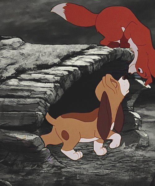 Fox and the hound